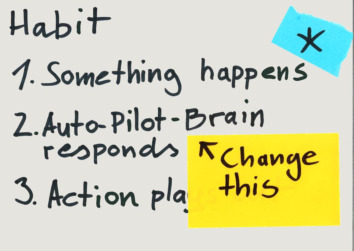 Image: The autopilot brain